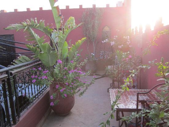 Riad La Porte Rouge: Balcony