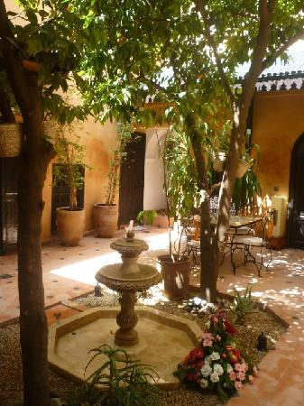 Riad Des Orangers: patio
