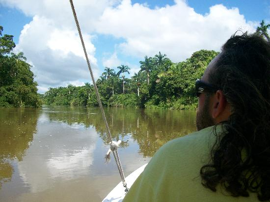 Tanisha Tours: Riding the boat up the river to see wildlife...