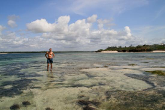 Lemodja Safaris & Tours : Im Marinenationalpark Watamu