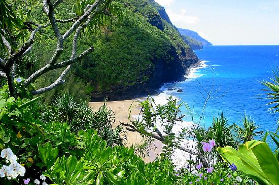 View Of The Napali Coast F Rom The Kalalau Trail Picture