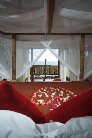 The Cove Treehouses: view out from the bedroom