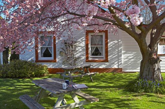 Settlers Cottage Motel: Exterior