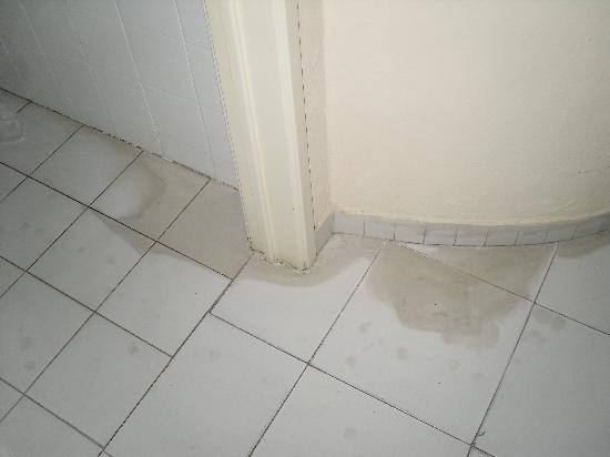Cheerfulway Valmangude Jardim: Stained floor