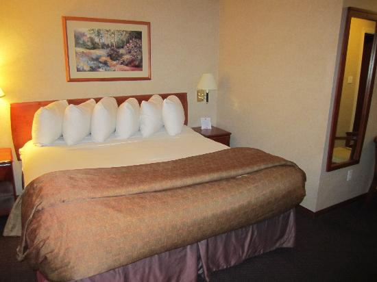 Days Inn - Vancouver Airport: Our bed