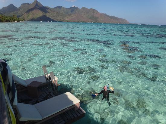 Hilton Moorea Lagoon Resort & Spa: view from 109