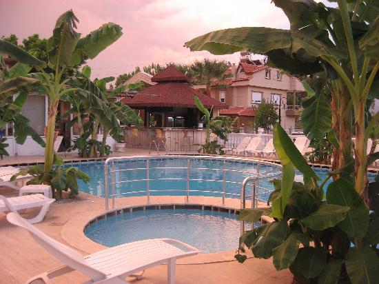 Ozcem Apart Hotel: Pool