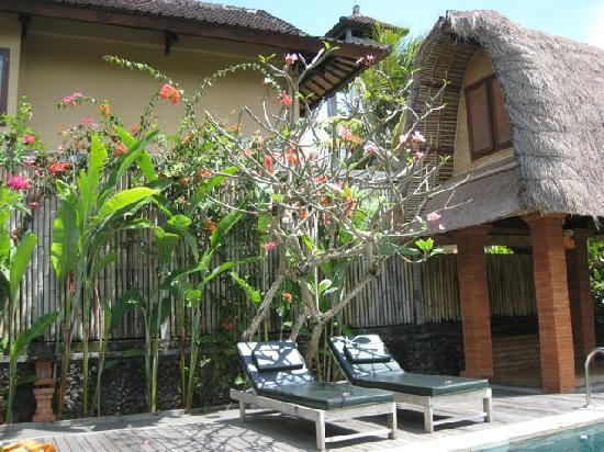 Ubud Lestari Bungalows: pool