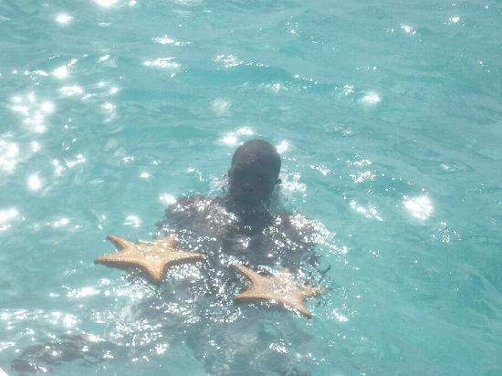 Isla Saona: Estrellas de mar para dos