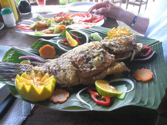 Cascajo's del Arenal : Sea Bass in Garlic
