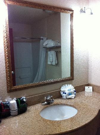 Best Western Grandbury Inn & Suites: Bathroom