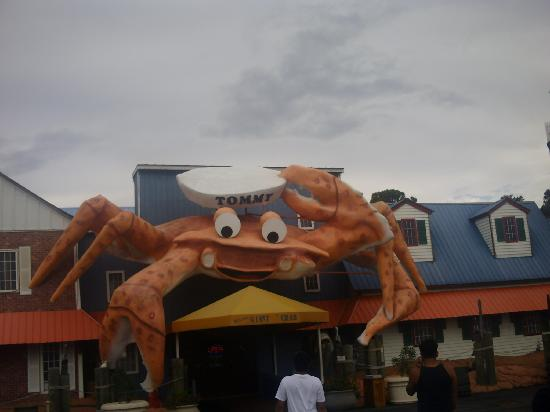 Giant Crab Seafood Restaurant: Tommy The Crab!