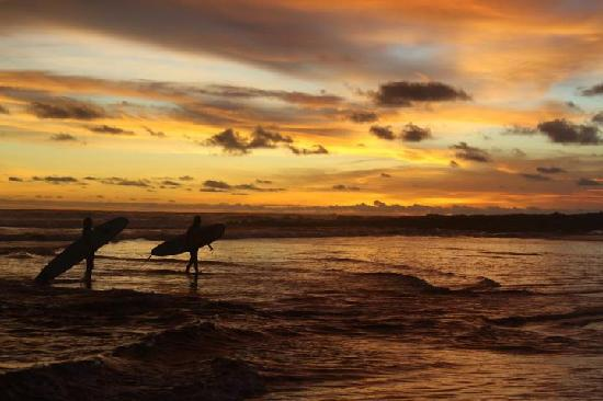 Surf With Amigas- Women's Surf and Yoga Retreat: Surfing in the sunset