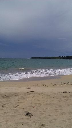 Alby Lodge: Cahuita Point, from the beach!