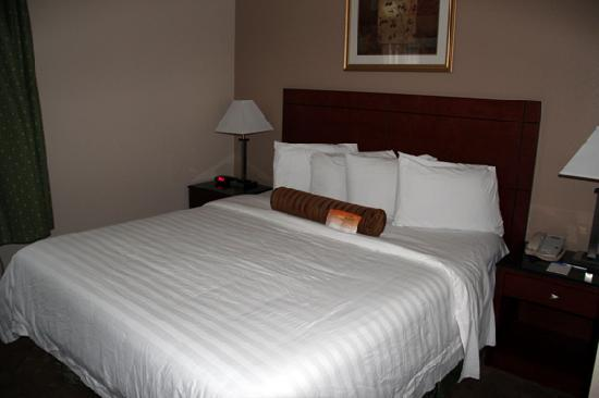 Howard Johnson Pasadena : The bed was clean and comfortable.