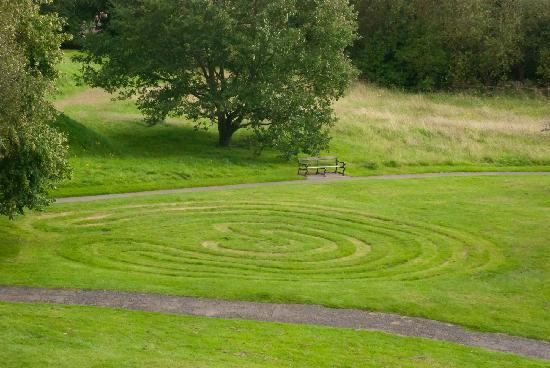 Brandon Hill Nature Park : Crop circles in Bristol??