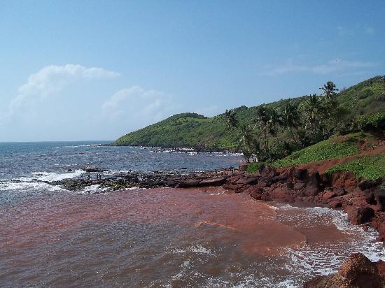 Anjuna, الهند: Anjuna beach