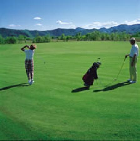 Hotel Abano Leonardo Da Vinci Terme & Golf: Golf