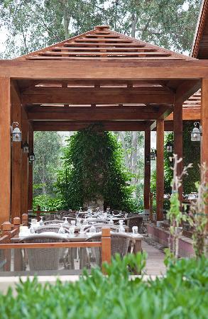 Divan Bodrum: Restaurant Outside