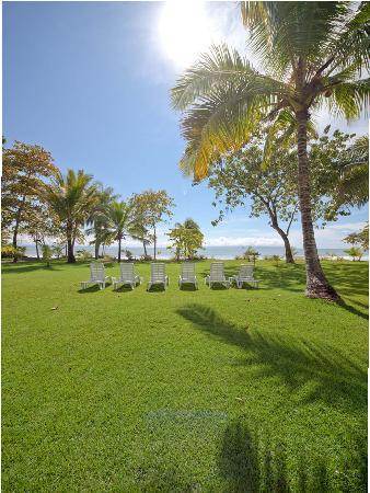 Blue Osa Yoga Retreat and Spa: Lawn Chairs, ocean View