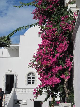 Mediterranean Beach Resort: Un rincón del hotel