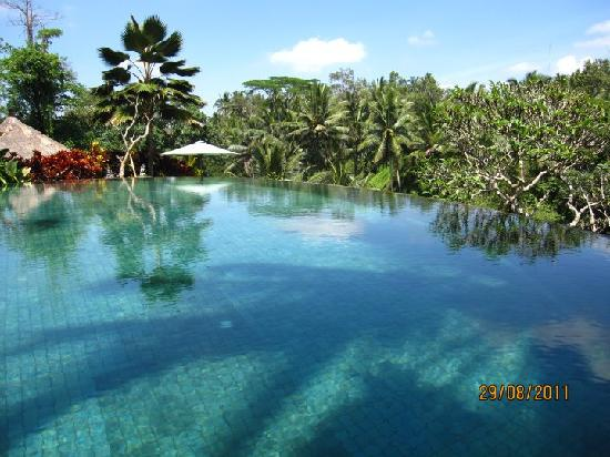 Villa Semana: Main pool