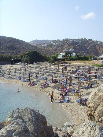 Elia Beach: Agrari Beach nur 5 min weit entfernt