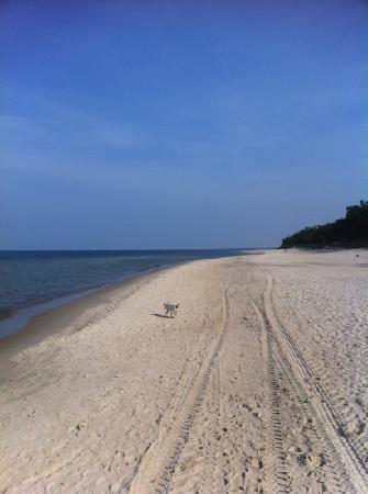 HAVET Hotel Resort & Spa: Strand vor dem Hotel