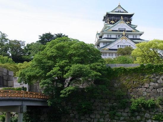 Osaka, Japan: 極楽橋付近から見た天守閣