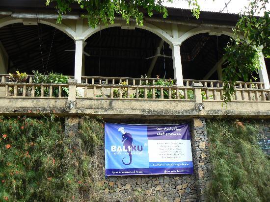 Baliku Dive Resort: The Resort