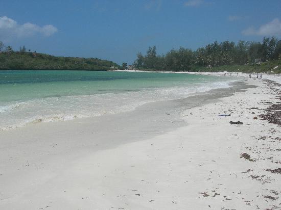 Barracuda Inn: spiaggia di fronte all hotel
