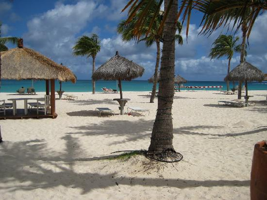 Bucuti & Tara Beach Resort Aruba: First day breakfast on the deck, what a sight!