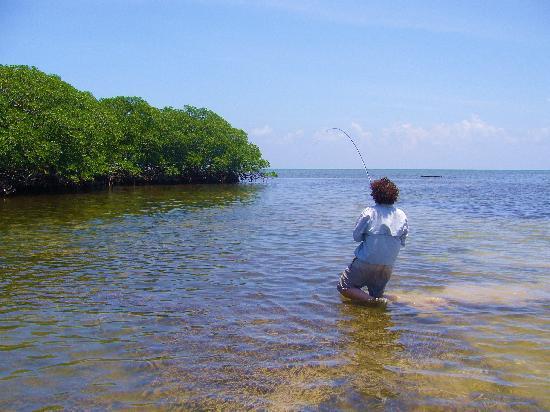 Pesca Mahahual: Wading flats for Bonefish