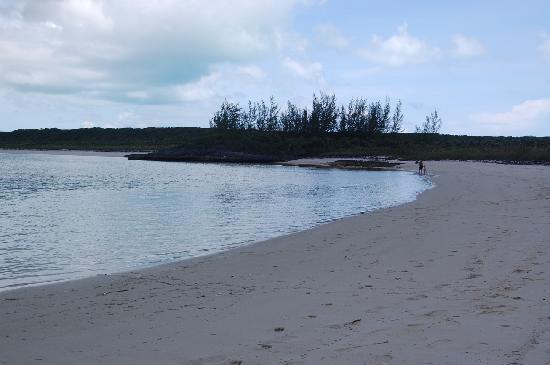 Beach at Dean's Blue Hole