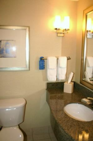 Hilton Garden Inn Mankato Downtown: Bathroom - sink area, well cared for.