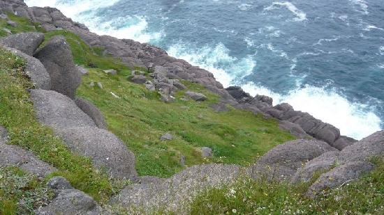 Cape Spear Lighthouse: Cape Spear