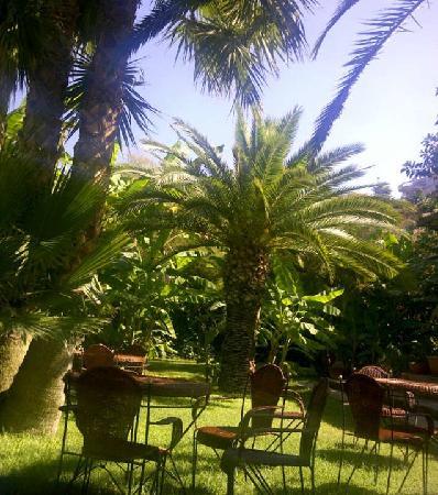 Villa Giada: a view of the garden