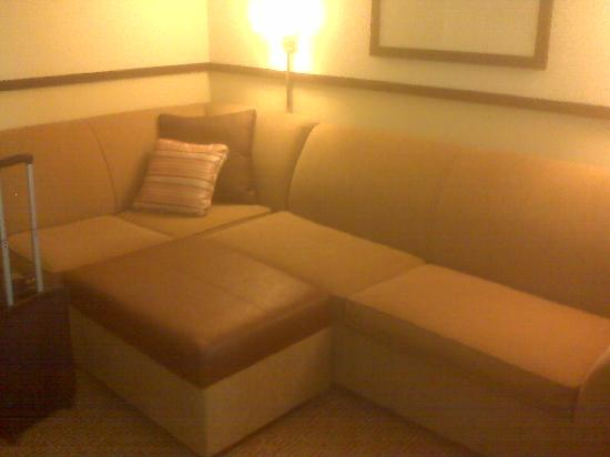 Hyatt Place Overland Park/Convention Center : Seperate living room area