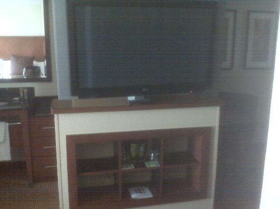 Hyatt Place Overland Park/Convention Center : Awesome swivel flat screen