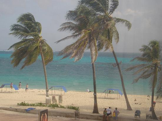 Hotel Blue Tone: la playa
