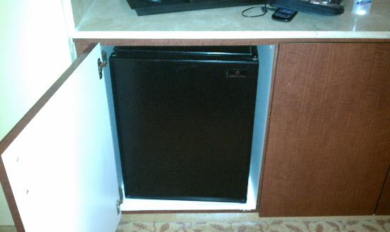 Dallas Marriott Suites Medical/Market Center: Mini Fridge in Room
