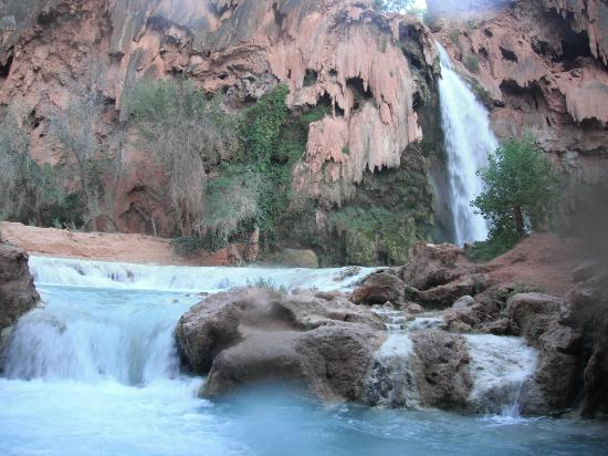 The Wildland Trekking Company: Havasu Falls right next to campsite