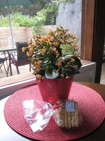 Torquay Toongahra BnB: Flowers and Cookies
