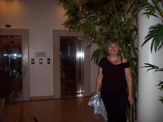 Hilton Florence Metropole: loby