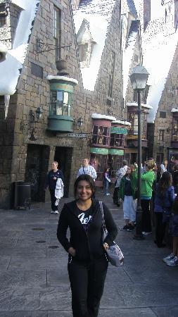 The Wizarding World of Harry Potter: Hogsmeade