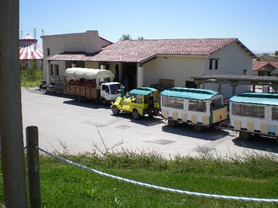 Sendaviva: los 2 transportes, camion y tren