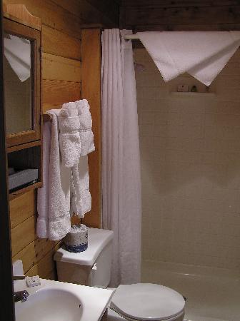 Laguna Vista Lodge: Bathroom