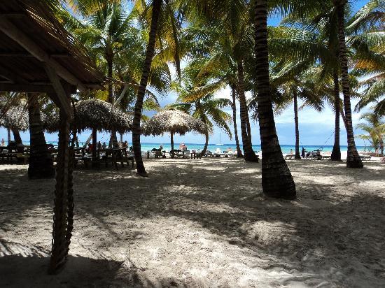 IFA Villas Bavaro Resort & Spa: sur l'ile de Saona