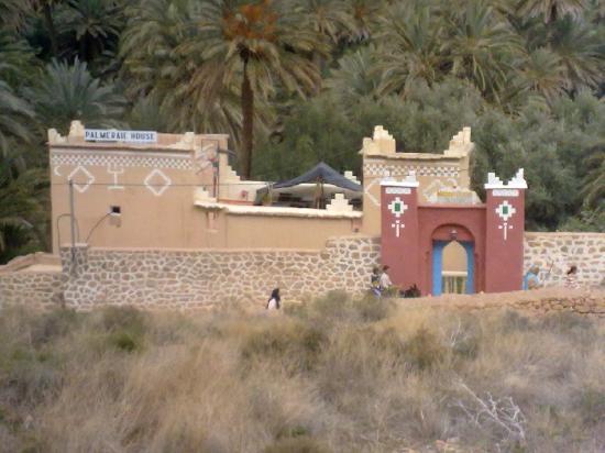 Palmeraie Guesthouse : palmeraie guest house