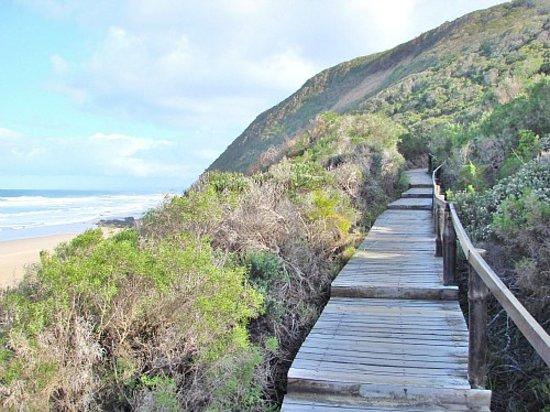 Goukamma Nature Reserve: Platbank Boardwalk